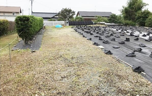 おひさま発電所 鹿本第1