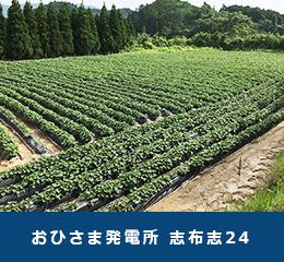 鹿児島県志布志市おひさま発電所志布志24