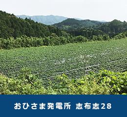 鹿児島県志布志市おひさま発電所志布志28
